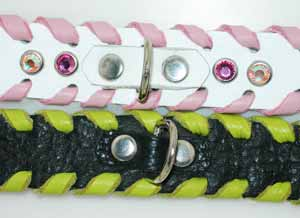 leather dog collars poodle ring