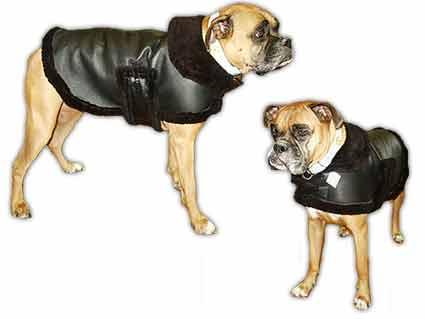 DESIGNER GENUINE SHEARLING DOG COATS:sheepskin dog clothing ...