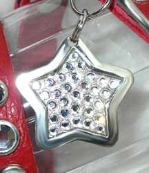 diamond pet tags