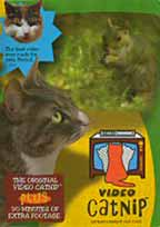 Video Catnip Cat entertainment DVD